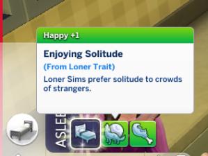 loner trait evidence
